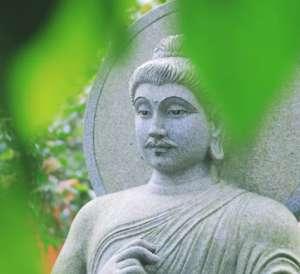 佛陀是调御丈夫吗